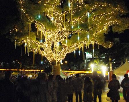 树灯流星雨